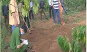Lâm Đồng: Giết người dấu xác tại vườn cà phê