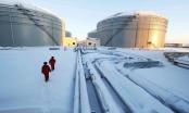 Nga tăng cường liên minh năng lượng với Trung Quốc