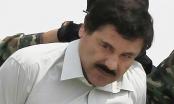 Mexico bắt trùm ma túy vượt ngục 6 tháng