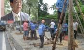 GS Nguyễn Lân Dũng: 'Đi nước ngoài học trồng cây người ta cười cho'
