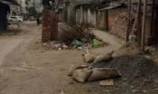 Hà Nội: Dân khổ vì đường xuống cấp