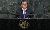 Tổng thống Hàn Quốc không muốn Triều Tiên sụp đổ