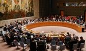 Liên Hợp Quốc họp khẩn về tấn công hóa học làm 70 người chết ở Syria