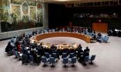 Liên Hợp Quốc không thông qua nghị quyết về Syria của Mỹ và Nga