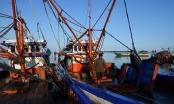 Philippines yêu cầu Trung Quốc ngừng tịch thu cá của ngư dân