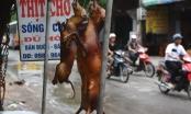 Lãnh đạo Hà Nội mong người dân thay đổi thói quen ăn thịt chó, mèo