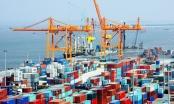 """Hạ giá dịch vụ cảng biển """"vô tội vạ"""", doanh nghiệp Việt tự tìm đường… """"chết""""?"""