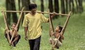 Rớt nước mắt với câu chuyện ba anh em tranh nhau hiến thận thương cha già cả đời lam lũ