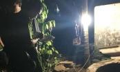 Phát hiện người đàn ông tử vong dưới giếng sau 3 ngày mất tích