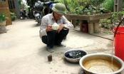 Phú Thọ: Nước giếng tự làm phép đổi màu