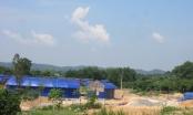 Trung tâm dạy nghề bị tố tàn phá di tích Côn Sơn