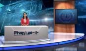 Bản tin Tổng hợp Phapluatplus: Minh Sâm đang chữa trị bệnh tại Hà Nội?