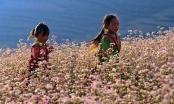 Du lịch Việt Nam: Bao giờ thoát được tư duy ăn sẵn?