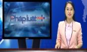 Bản tin thời sự PhapluatPlus: Triệt phá đường dây buôn ma tuý lớn