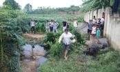 Phú Thọ: Gần 300 hộ dân kêu cứu vì ô nhiễm môi trường