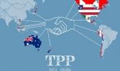 Gia nhập TPP: Việt Nam cam kết xóa bỏ gần 100% dòng thuế