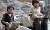 Triển khai dự án Phòng ngừa, giảm thiểu lao động trẻ em ở Việt Nam