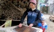 Cao Bằng: Giữ lửa nghề làm giấy bản Lũng Quang