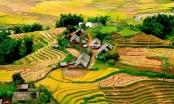 Việt Nam lọt danh sách 6 quốc gia an toàn nhất cho khách du lịch