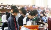 Quảng Nam: Nhóm học sinh cướp tài sản của người nước ngoài lãnh án