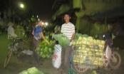 Hà Nam: Kiếm tiền tiêu Tết ở chợ Âm phủ