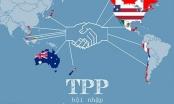 Hiệp định TPP: Cú hích giúp kinh tế Việt Nam khởi sắc
