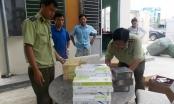 Quảng Nam: Bắt một xe khách vận chuyển trái phép 1.270 gói thuốc lá
