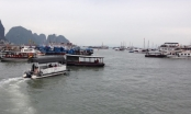 Quảng Ninh:Cảng vụ Đường thủy cho phép tàu du lịch đón, trả khách trái luật