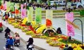 Festival Hoa Đà Lạt 2015: Tôn vinh người nghiên cứu, trồng và kinh doanh hoa