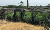 Kỳ 1: Lật tẩy hàng loạt sai phạm trong GPMB tại quận Bắc Từ Liêm