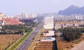 """Đà Nẵng: Những dự án """"nhạy cảm"""" sẽ được rà soát"""