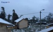 Tuyết rơi suốt đêm phủ trắng Sa Pa, Y Tý