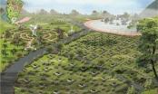 Công bố quy hoạch chi tiết xây dựng Công viên nghĩa trang huyện Mỹ Đức