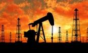 Giá dầu tăng trước thềm họp OPEC