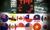 Chính thức ký Hiệp định TPP vào ngày 4/2
