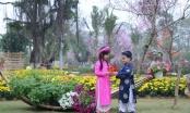 Hà Nội:  Rực rỡ sắc màu cùng lễ hội hoa xuân…