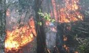Lào Cai: Khống chế được đám cháy trên rừng Hoàng Liên