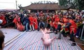 Lễ hội chém lợn: Bàn chuyện phẫu thuật... thay đổi nhận thức ngàn đời!