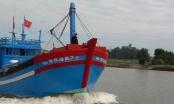 Quảng Ngãi: Khát vọng bội thu, ngư dân hối hả ra biển