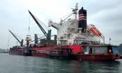 Vịnh Hạ Long: Bức tranh di sản hoen ố do tàu sang tải trái phép