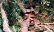 Tuyên Quang: Lâm tặc đốt lửa nghi binh để khai thác gỗ nghiến