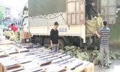 Hải Phòng: Bắt giữ vụ vận chuyển 115.500 bao thuốc lá lậu