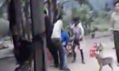 Quảng Bình: Đoàn công tác kiểm lâm Phong Nha - Kẻ Bàng bị tấn công