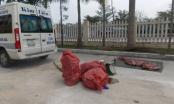 Quảng Nam: Bắt giữ gần 300 kg thịt heo không rõ nguồn gốc