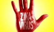 Hai trường hợp nhiễm vi rút Zika đều do muỗi đốt
