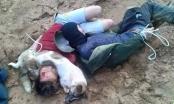 Trộm chó dùng súng bắn người truy đuổi: Xử lý tội giết người?