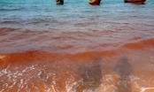 Biển Quảng Bình xuất hiện dòng nước lạ màu đỏ đục kéo dài hơn 1km