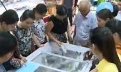 Hà Tĩnh: Các điểm bán hải sản sạch hút khách