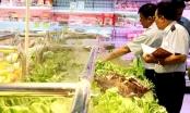 Hà Nội: Hơn 7.000 cơ sở vi phạm an toàn thực phẩm trong 5 tháng