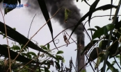 Lình xình các vụ việc gây ô nhiễm môi trường ở Hóc Môn: Hàng loạt vi phạm bị phanh phui